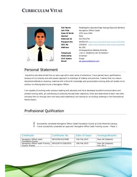 Professional Cv Exles by Professional Cv Pdf