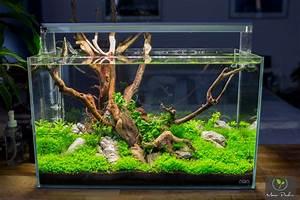 Holz Für Aquarium : diy led lampe selber bauen aquariumbeleuchtung aquascaping forum ~ A.2002-acura-tl-radio.info Haus und Dekorationen