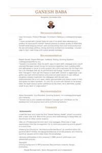 resume management consultants pvt ltd project management consultant resume sles visualcv