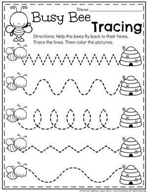 bug activities bug activities preschool worksheets