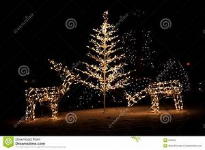 Christmas Yard Lights stock photo Image of glow, dark