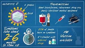Hepatitis B - T... Hepatitis A Transmission