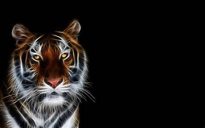 Tiger Backgrounds Tigres Wallpapers Uanl Cool Computer