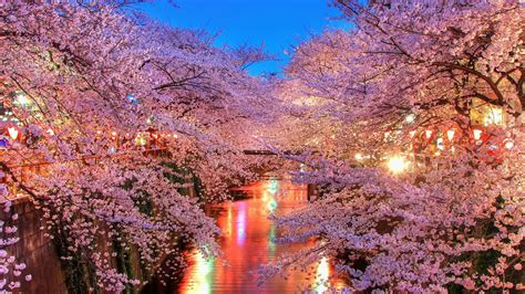 Japan Wallpapers  Best Wallpapers