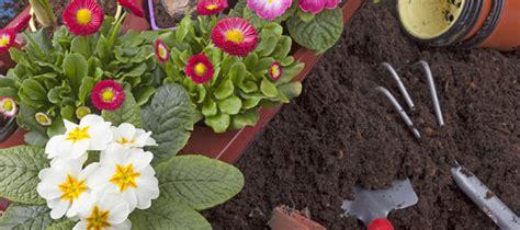 Gartenarbeit Im März  Das Gibt Es Jetzt Zu Tun