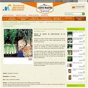 Culture Celeri Branche : l gumes racine pearltrees ~ Melissatoandfro.com Idées de Décoration