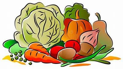 Clip Vegetable Vegetables Fresh Extend Clipart Illustrations