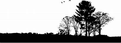 Silhouette Landscape Tree Trees Nature Clipart Landscaping