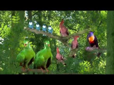 Tittifers In The Garden - in the garden tittifers song reversed