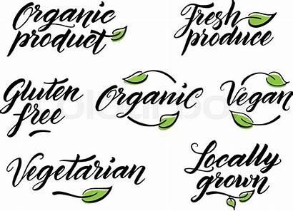 Label Healthy Template Vegan Gluten Drawn Vegetarian