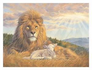 To Be Lionhearted and Lamblike: My Prayer for Every Man ...