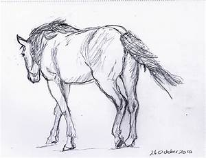 Frabjous Art Musings: Horse Sketch 44