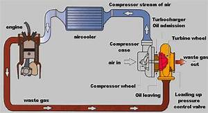 Jetta Turbo Engine Diagram