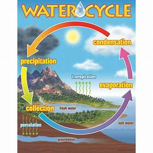 Trend Enterprises  Inc  Chart The Water Cycle