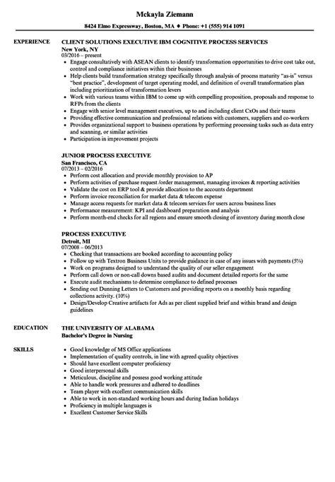Process Executive Resume Samples | Velvet Jobs