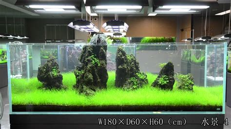 braceless  brace aquarium tank