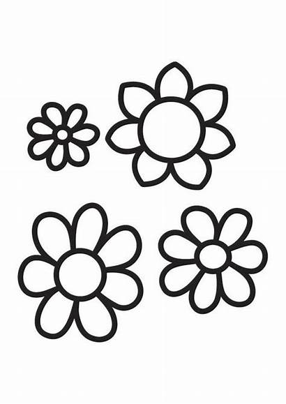 Colorear Flores Dibujo Grandes