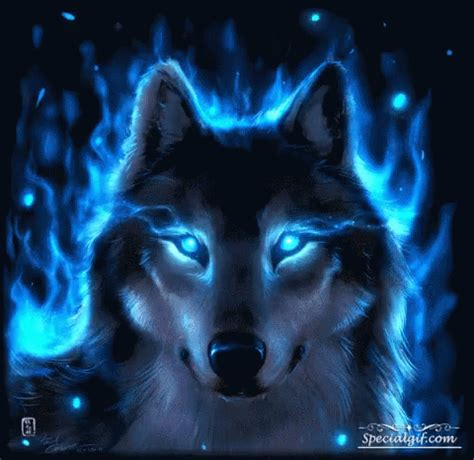 Alpha Wolf Blood Moon Wolf Wallpaper by Blue Wolf Gif Bluewolf Discover Gifs