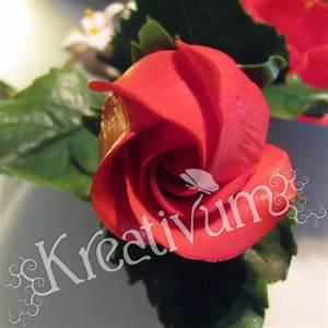 Hohe Pflanzkübel Für Rosen : besondere anl sse 1 hohe schlanke hochzeitstorte mit rosen ~ Whattoseeinmadrid.com Haus und Dekorationen