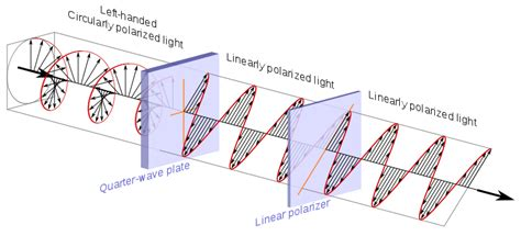 file circular polarization circularly polarized light circular polarizer passing left handed