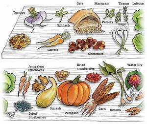 The first Thanksgiving: Plenty of meat and vegetables, not ...