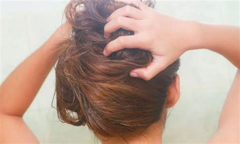 How To Lighten Colored Black Hair Naturally by How To Lighten Dyed Hair Naturally That Is