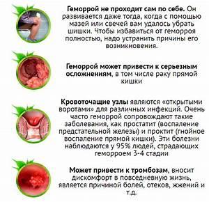 Какие фрукты полезны при геморрое