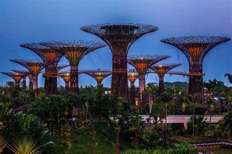 Singapore Vertical Garden singapore supertrees vertical gardens opens to zimbio