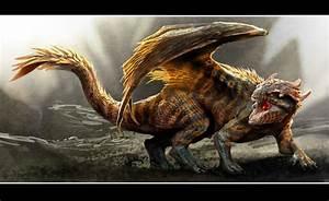 ravine dragon design 3 by nebezial on DeviantArt
