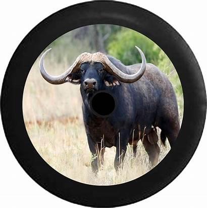 Jeep Bull Horns Tire Longhorn Spare Camera
