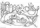 Pond Coloring Pages Printable Adults sketch template