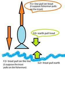 Newtonian Mechanics  Word Problem  Calculate Forces