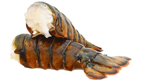 We've love ordering from lobsterguy! Lobster Tails | ChefZone | Bringing Out Your Inner Chef
