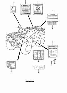 Suzuki King Quad 300 Parts Diagram  Suzuki  Auto Wiring