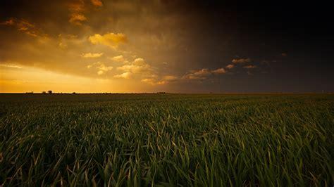 Sunset Over Corn Field 4k Ultra Hd Desktop Wallpaper