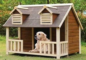 A guide to finding the best dog houses for large dogs for Best dog houses for large dogs