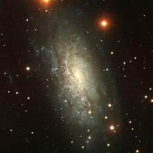 APOD: 2003 July 19 - NGC 3621: Far Beyond the Local Group