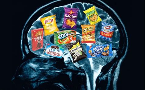 junk food   brain chemistry