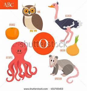 Cute zoo alphabet vectorf letter funny stock vector for Animals with the letter o in their name