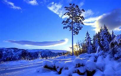 Winter Snow Nature Hill Sunrise Sunset Trees