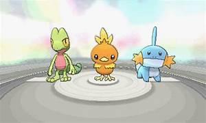 Pokemon Treecko Torchic And Mudkip Images | Pokemon Images