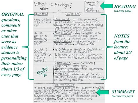 what is a template in biology biology knights february 2013
