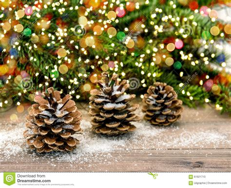 pine cone and christmas tree branches color lights