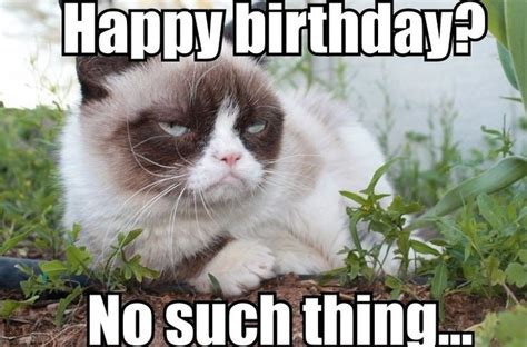 Grumpy Cat Meme Happy Birthday - best happy birthday cat meme