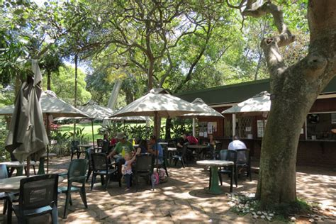 tea at durban botanic gardens