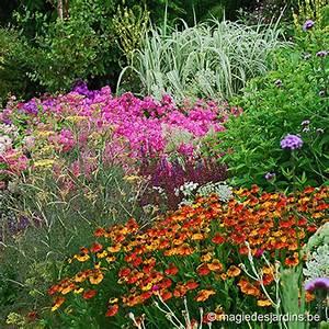 Parterre De Plante : bordure fleurie magie des jardins ~ Melissatoandfro.com Idées de Décoration