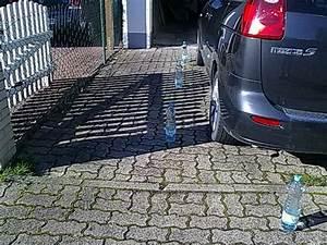Marder Im Auto : marder im auto erfolgreich vertreiben ~ Yasmunasinghe.com Haus und Dekorationen