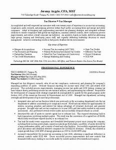 tax director sample resume professional resume writing With director level resume examples