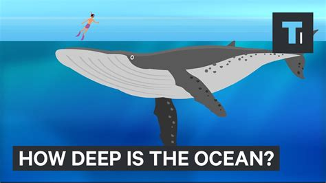 how deep is the water table where i live this incredible animation shows how deep the ocean really