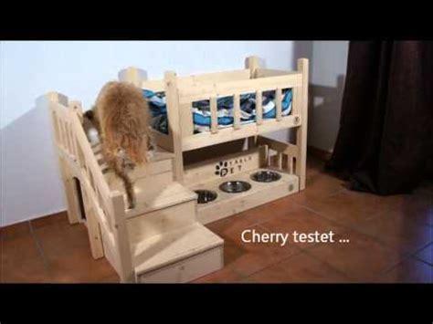 hochbett fuer katzen und hundewmv youtube
